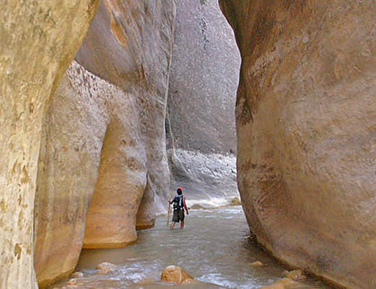 Entering The Narrows of Zion National Park
