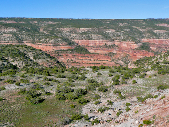 McInnis Canyons National Conservation Area from the Black Ridge Trail (GPS: N39 5.071 W108 44.012)