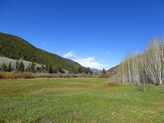 Aspen-ringed meadows in Hunter Creek Valley