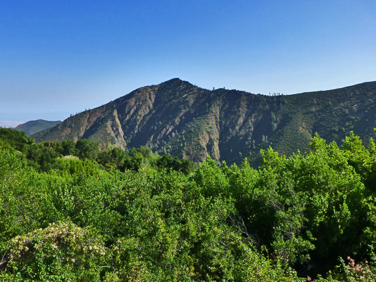 Eagle Peak (2,380') from Mitchell Canyon Fire Road